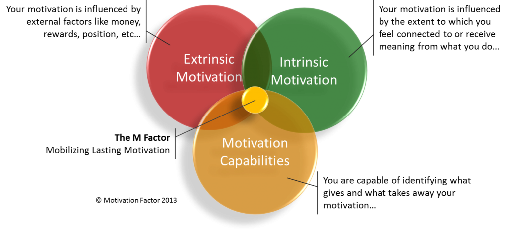 factors for motivating employees Employee motivation is the level of energy, commitment, and creativity that a company's workers apply to their jobs in the increasingly competitive business environment of recent years, finding ways to motivate employees has become a pressing concern for many managers in fact, a number of.