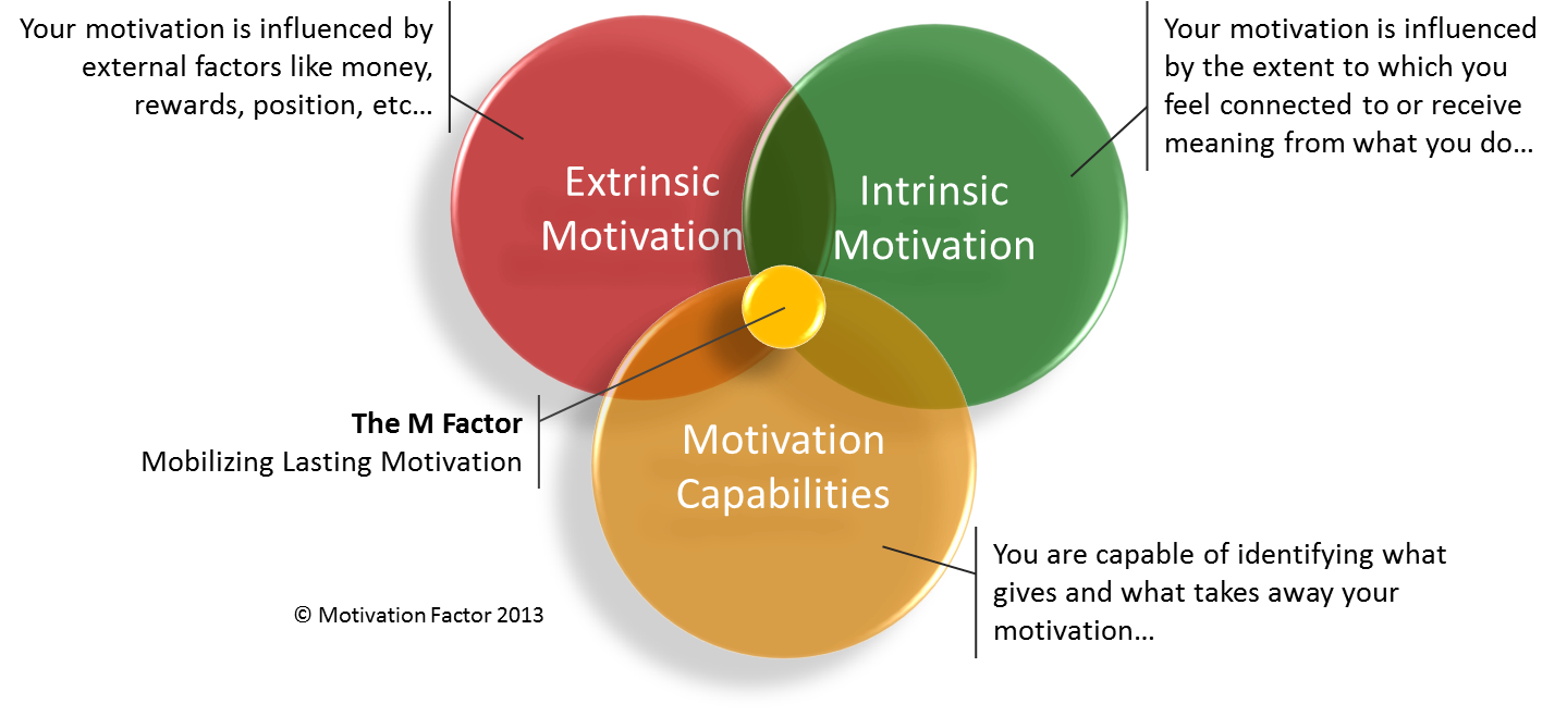 factor motivation employee in the work I want to overemphasis the role of motivation in all spheres of human kind, whether at work place, be it at school, family processes and indeed wherever effort output is in comparison, motivation is a strong factor.